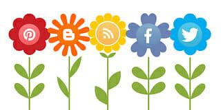 social media system