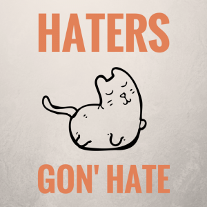 Haters Guide