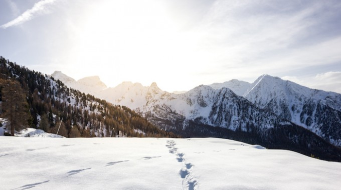 Snowhike