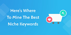 Where to Mine the Best Niche Keywords